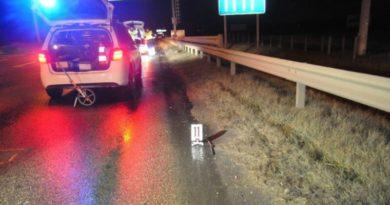 Gázolásos baleset az M3-as autópályán
